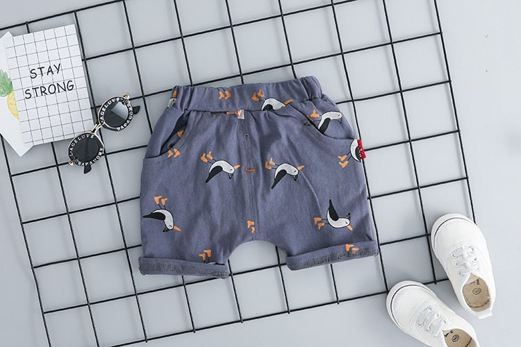 Unisex Lion T-shirt Birdy Short Outfit-unisex pant and top-Purple Bees
