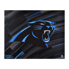 "Load image into Gallery viewer, Carolina Panthers 16"" x 20"" Embellished Giclee"