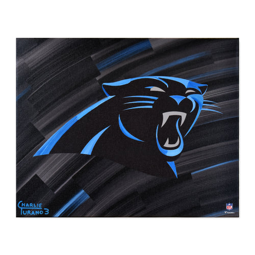 Carolina Panthers 16