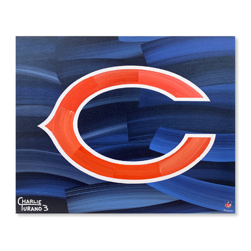 Chicago Bears 16