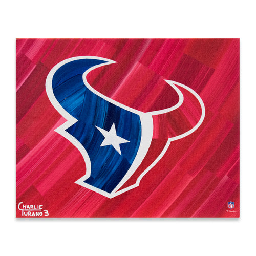 Houston Texans 16