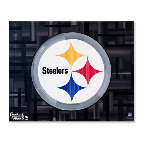 Pittsburgh Steelers 16
