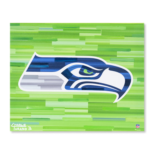 Seattle Seahawks 16