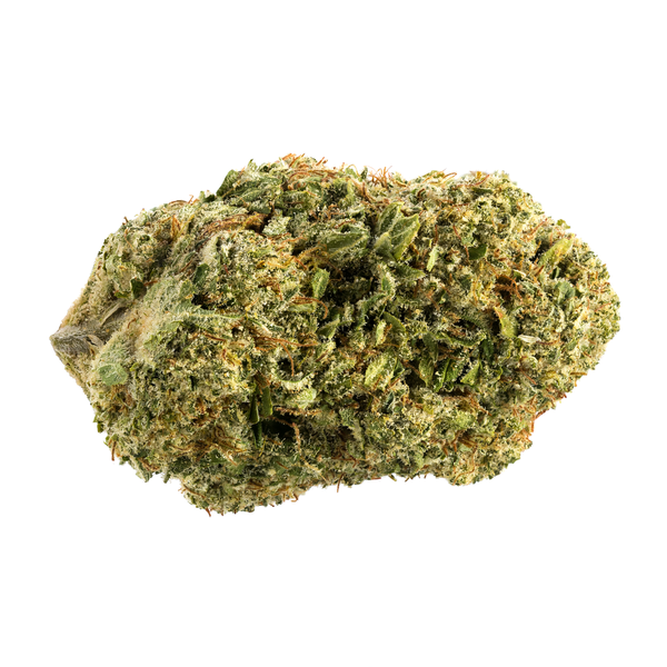 7ACRES Sensi Star Hybrid Dried Flower