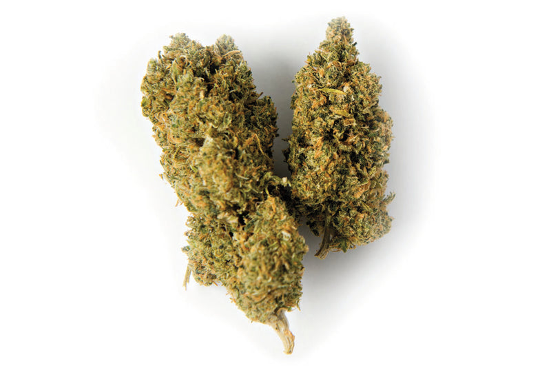 Color Cannabis Mango Haze Sativa Dried Flower