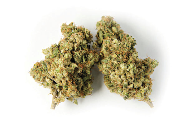 Color Cannabis Pedro's Sweet Sativa Dried Flower