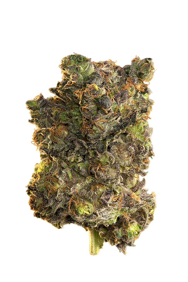Edison Blue Velvet Indica Dried Flower
