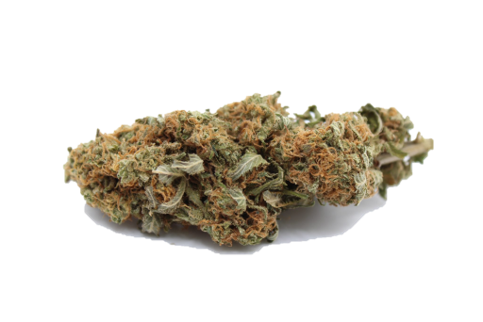 Canaca Ghost Train Haze Sativa Dried Flower