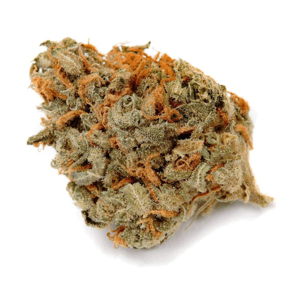 Haven St. No. 504 Hanna Haze Sativa Dried Flower