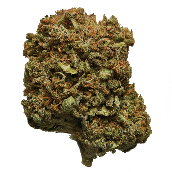 HEXO Helios Flower Sativa Dried Flower