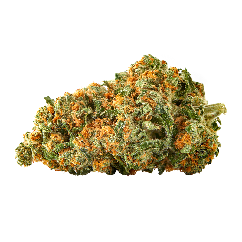 Sundial Lemon Riot Sativa Hybrid Dried Flower