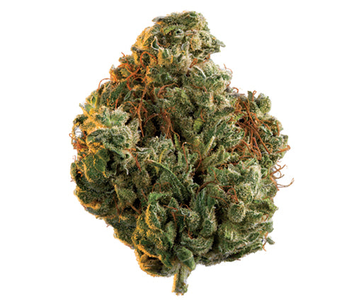 Edison Rio Bravo (Wabanaki) Sativa Dried Flower
