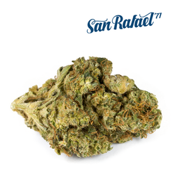 San Rafael '71 Delahaze Sativa Dried Flower