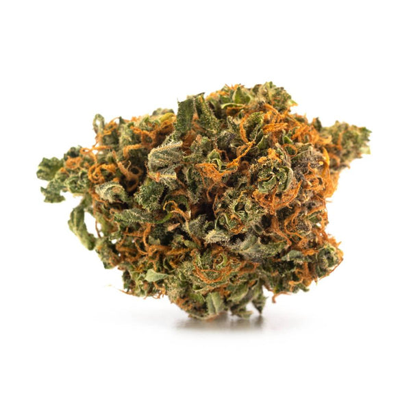 Tweed Argyle Indica Dried Flower