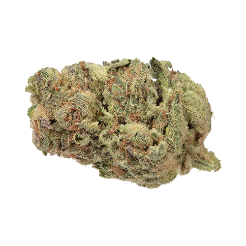 Haven St No. 419 Couch Surf Indica Dried Flower
