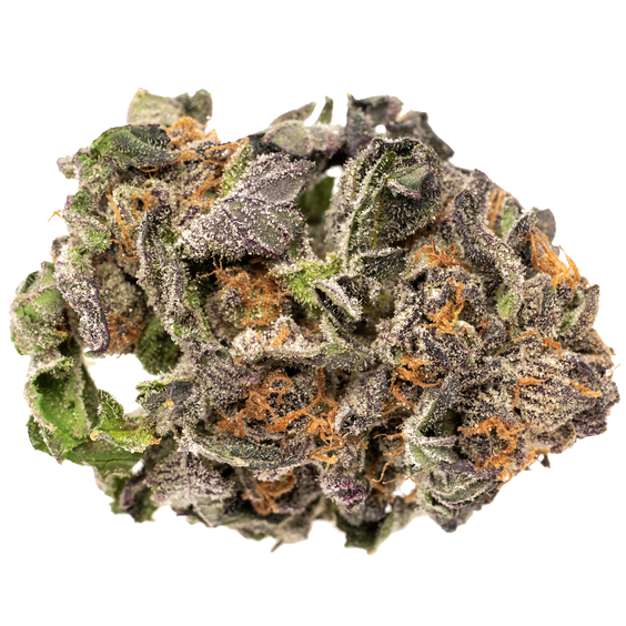 RIFF Subway Scientist (Grand Daddy Purps)