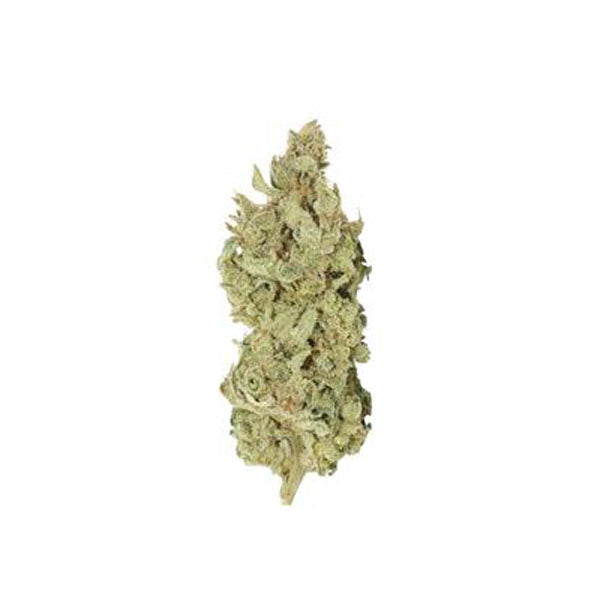 Tantalus Labs BC Sungrown Sky Pilot Hydrid Dried Flower