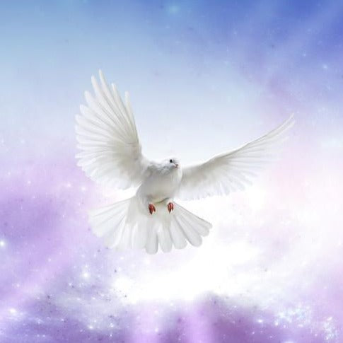 5 Gifts of the Holy Spirit™ - Space Cleansing & Protection