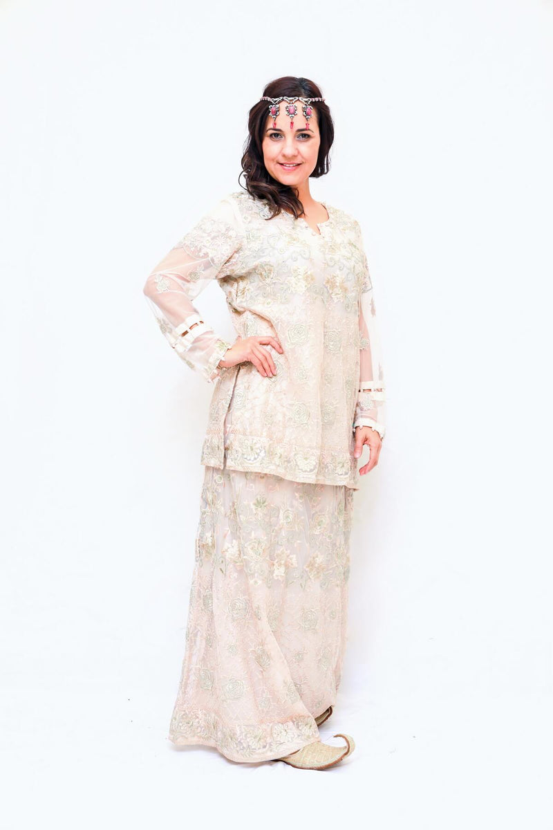 Lengha/Skirt Skirt and Blouse- Trendz & Traditionz Boutique