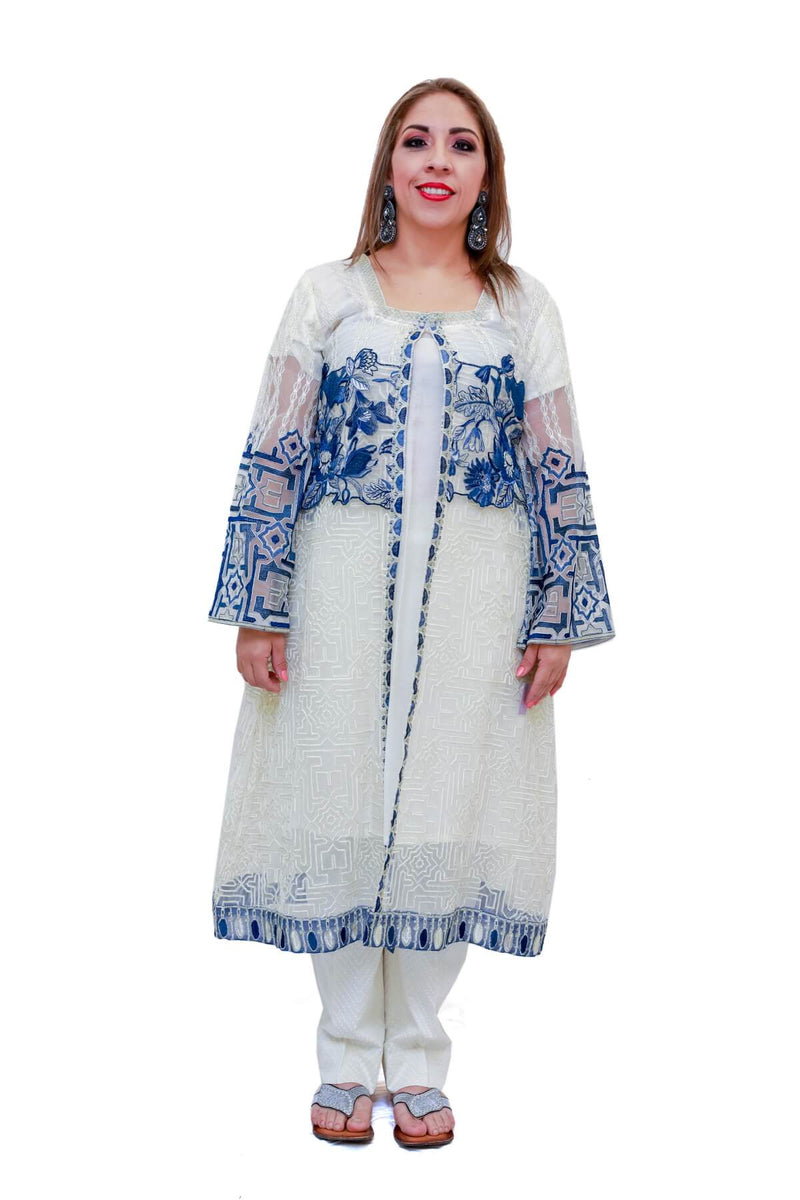 Indian Pakistani Net Embroidery Suit - Trendz & Traditionz Boutique
