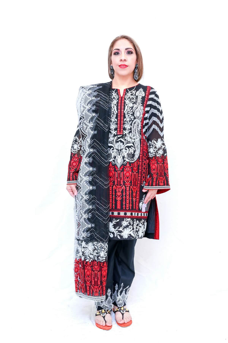 Indian Pakistani chiffon Black & Red Embroidery-Trendz & Traditionz Boutique
