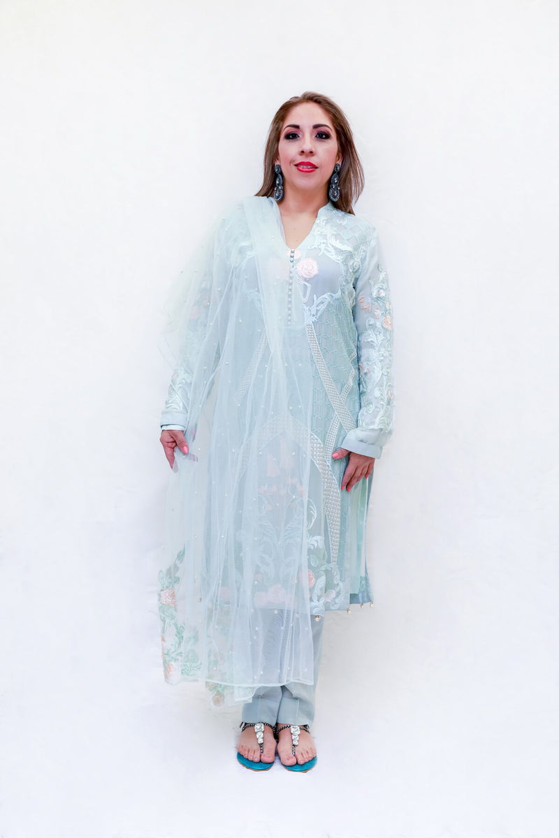 Indian Pakistani Organza Embroidery dress-Trendz & Traditionz Boutique