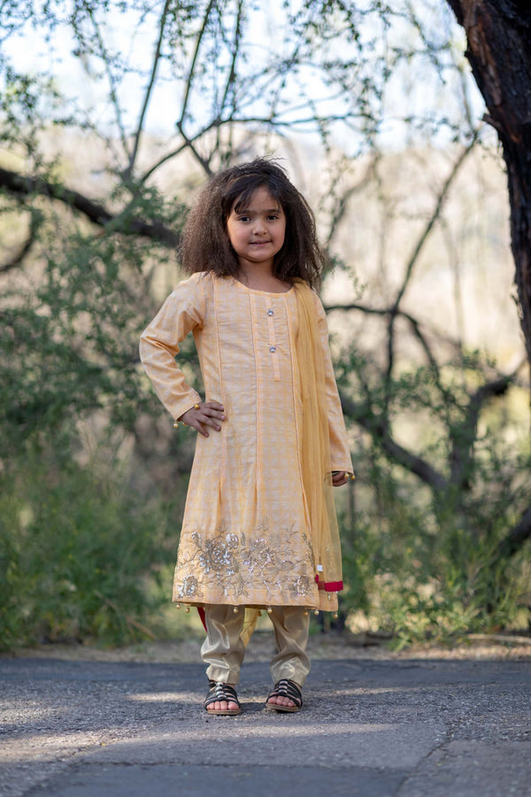 Girls Summer Dress-Salwar Kameez- Trendz & Traditionz Boutique