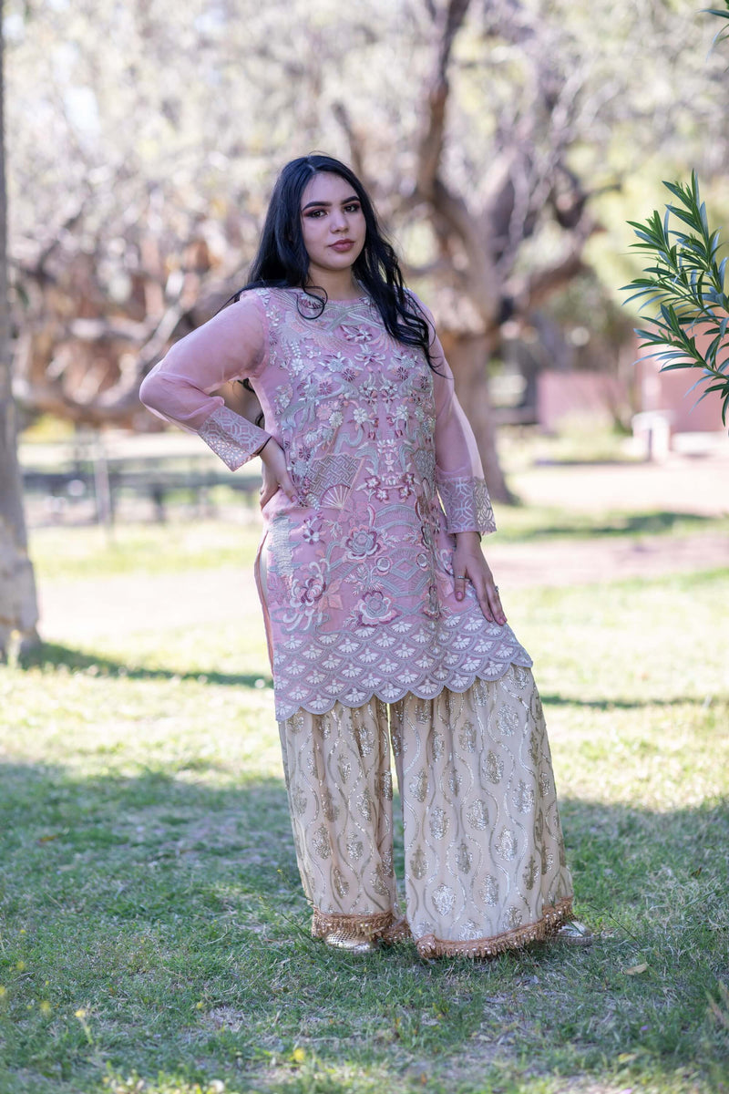 Organza Kurti Shirt & Garara Pants- Trendz & Traditionz Boutique