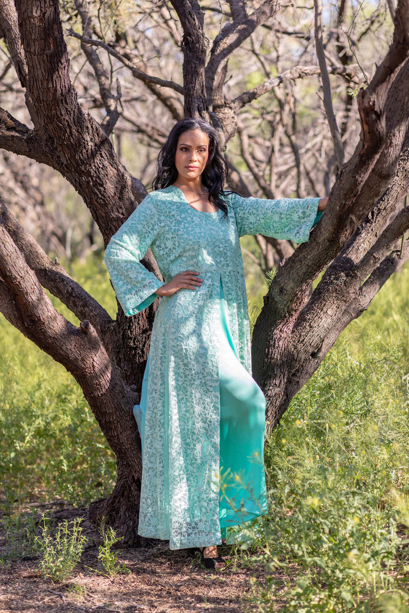 Net Gown Elegant Embroidery - Trendz & Traditionz Boutique
