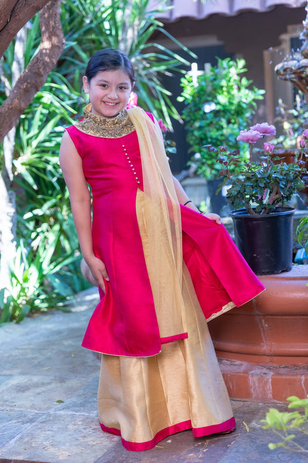 Pink and Gold Silk Dress - Trendz & Traditionz Boutique