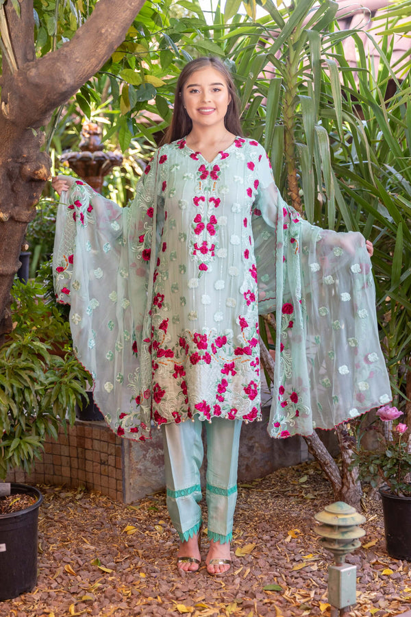 Chiffon Embroidery Suit-Salwar Kameez- Trendz & Traditionz Boutique