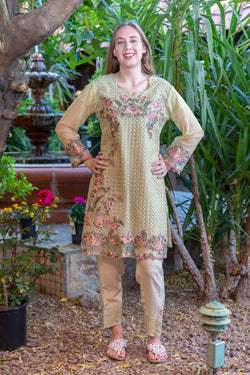 Tan-Pistachio Green Chiffon Salwar Kameez Suit with Embroidery- Trendz & Traditionz Boutique