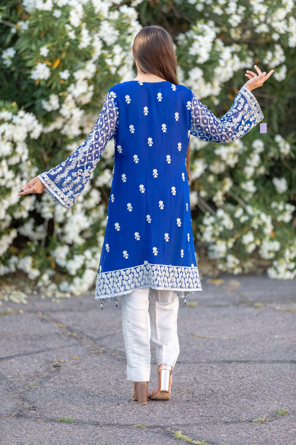 Blue Chiffon Embroidered Suit - Trendz & Traditionz Boutique