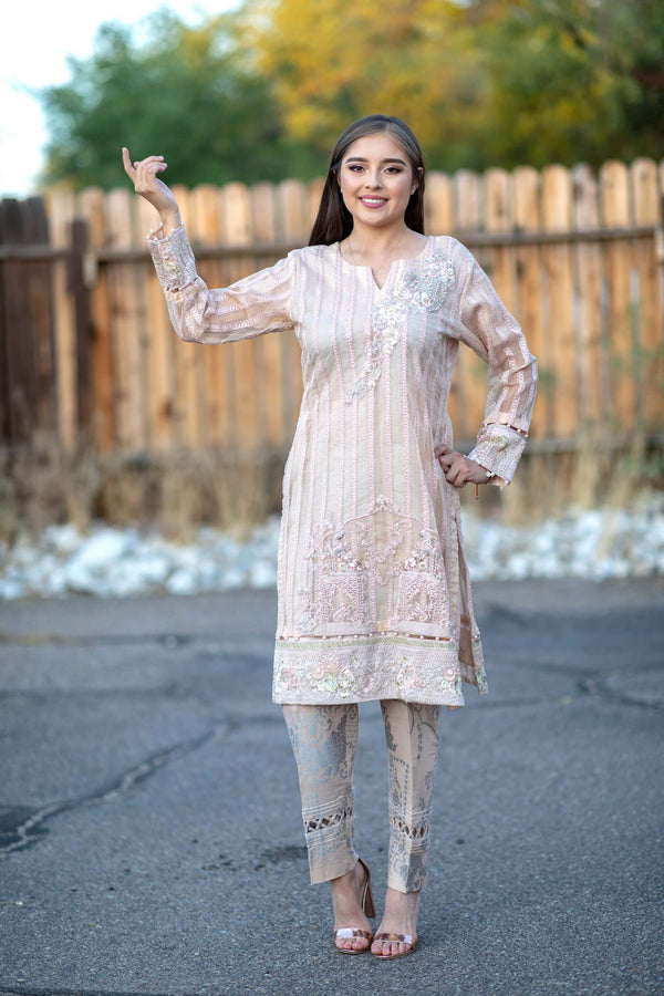 Beige Chiffon Salwar Kameez Suit - Trendz & Traditionz Boutique