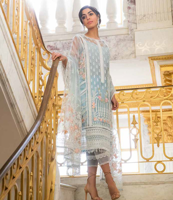Blue Net Salwar Kameez-Suit - Trendz & Traditionz Boutique