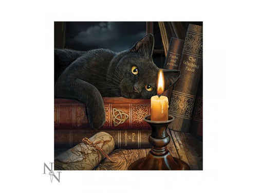 Lisa Parker Light Up Cushion Witching Hour (LP) 40cm