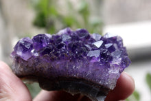 Load image into Gallery viewer, 70-80g BEAUTIFUL AMETHYST CRYSTAL CLUSTER GEODE FROM URUGUAY healing