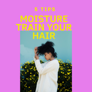 5 Tips to Moisture Train Your Hair