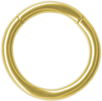 Gold Color Titanium Segment Ring 14g Piercing Hoop