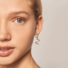 Load image into Gallery viewer, Asymmetric Initial 'Z' Earrings