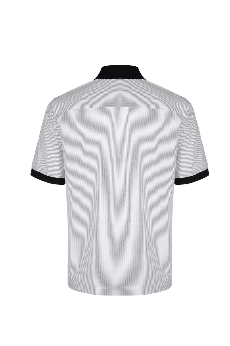 Back View of Men Contrast Collar Stripe Polo Shirt