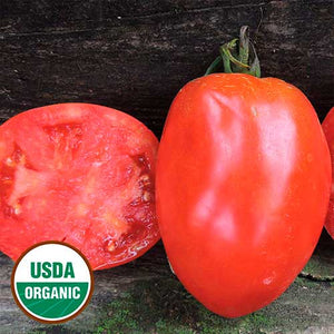 2 'SALVATERRA'S SELECT' TOMATOES | ORGANIC | HEIRLOOM | AROUND SINCE THE 1950S | 1 SHOWING BRIGHT RED OUTER SKIN/1 CUT IN HALF SHOWING MEATY INSIDE/GREAT FOR TANGY-SWEET TOMATO SAUCE | LATE MATURING.