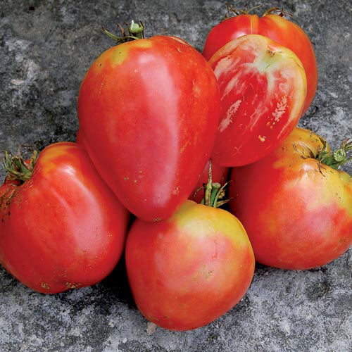 Hungarian Heart Tomato Seeds