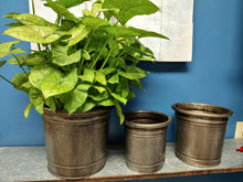 Load image into Gallery viewer, Metal Bucket Planters - 3 sizes - Vintage Look