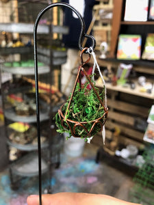 Fairy Garden Hanging Basket