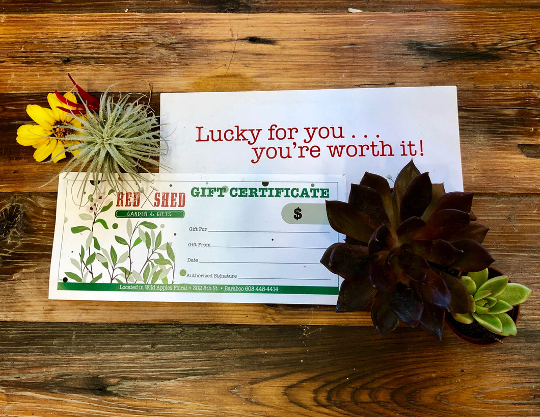 $75 VALUE RED SHED GARDEN AND GIFTS GIFT CERTIFICATE WITH ENVELOPE ON A WOODEN TABLE WITH AIR PLANT, SUCCULENT, AND FLOWER