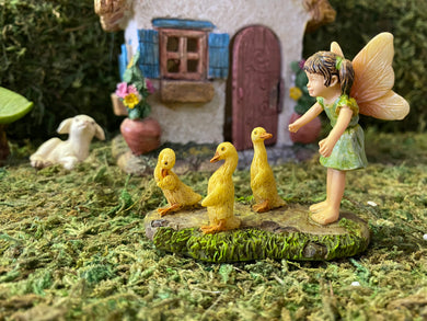 Fairy with her Wayward Ducks MG284
