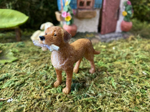 Fairy Garden Dog Ready to Play Fetch | MG49