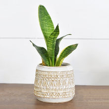 Load image into Gallery viewer, Bo Ho Ceramic Planter | Minimalistic | 13 X 13 X 11""