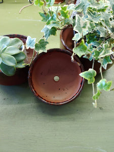 Shallow Succulent Planters - Set of 3 sizes - Burgundy-  perfect for your succulents